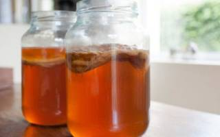 Можно ли пить чайный гриб при Болезние