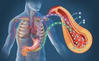 Альфа амилаза панкреатическая норма