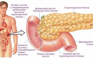 Почему увеличена поджелудочная железа у взрослого