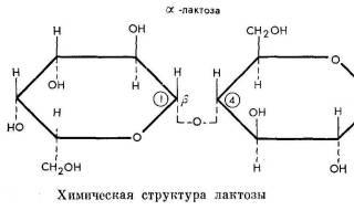 Есть ли лактоза в твороге