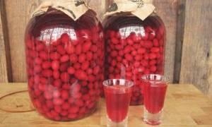 От чего таблетки панкреатин лект