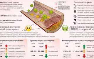 Допустимый уровень холестерина в крови для мужчин