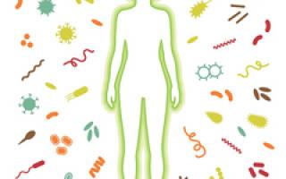 Как почистить организм от Болезниа