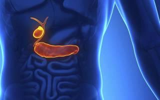 Функции Болезниа в организме человека