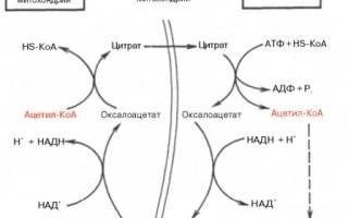 Синтез Болезниа биохимия