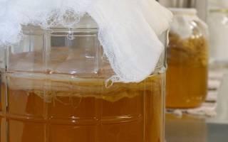 Чайный гриб при Болезние можно ли пить