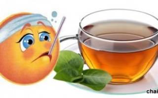 Можно ли пить зеленый чай при Болезние