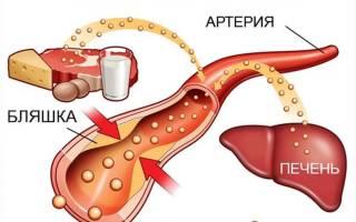 Какой холестерин в крови норма у взрослых