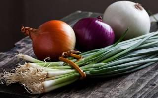 Как запечь лук в духовке для лечения