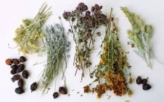 Травы при Болезние и холецистите