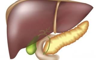 Народные методы лечения печени и поджелудочной железы
