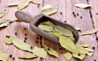 Чистка сосудов лавровым листом в домашних условиях