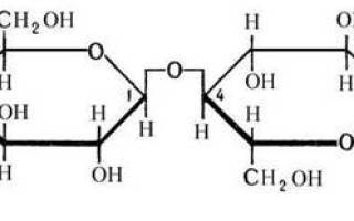 Лактоза биологическая роль