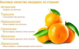 Вес одного мандарина без кожуры