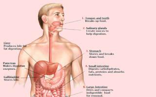 Как определить хронический Болезни