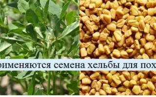 Семена хильбы применение