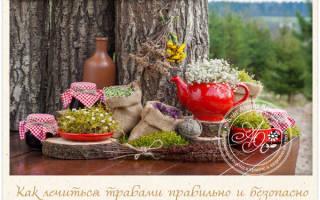 Лечение Болезниа травами лучший рецепт