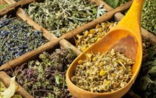 Какие травы снижают сахар в крови